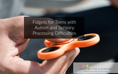 Fidgets for Teens with Autism and Sensory Processing Difficulties