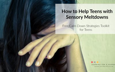 How to Help Teens with Sensory Meltdowns